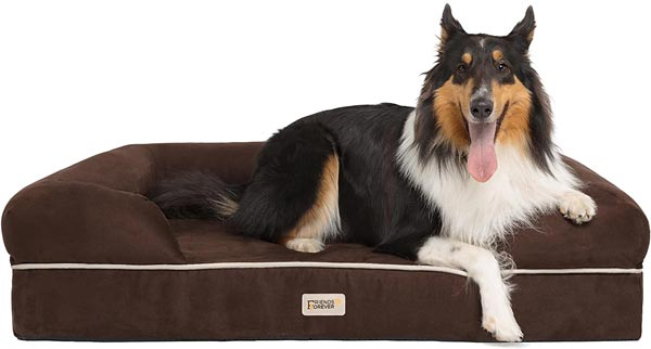 long haired dog sit on shed resistant bed