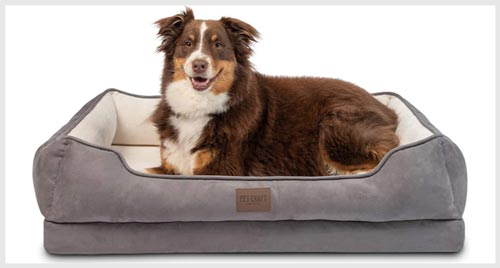 5. PET CRAFT Sofa Style Dog Bed