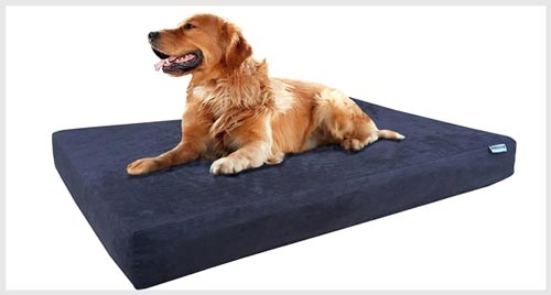 3. DOGBED4LESS Orthopedic Dog Bed