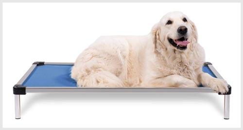 K9 BALLISTICS Elevated Dig-Proof Dog Bed