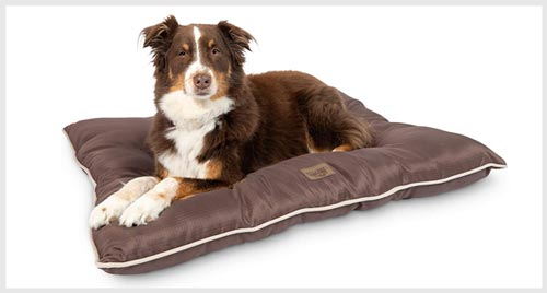Pet Craft Supply Durable Dog Bed