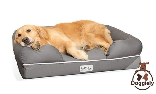 Why do dogs like bolster beds