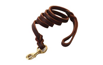 Fairwin braided leather leash for big dog