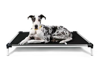 K9 Ballistics Chew Proof Elevated Dog Bed, Chew Resistant Indestructible