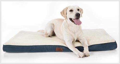 Bedsure Orthopedic cheap Dog Bed under $50