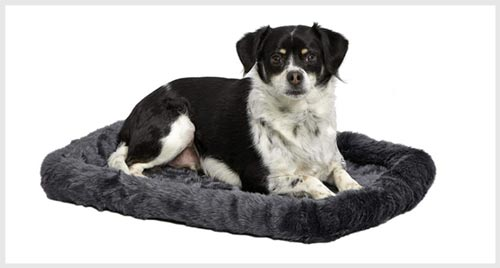 Midwest dekuxe bolster dog bed