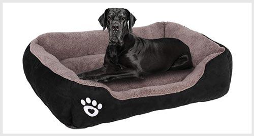 PUPPBUDD cheap Dog Bed less $50