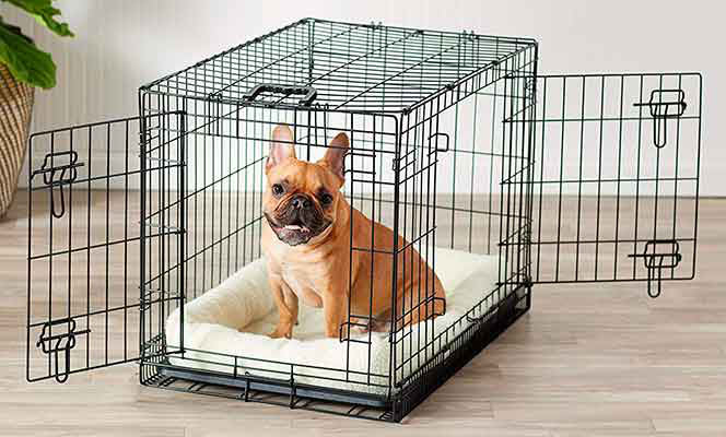 Pros Advantages of Crate Training