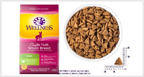 Wellness Complete Natural Dry Dog Food
