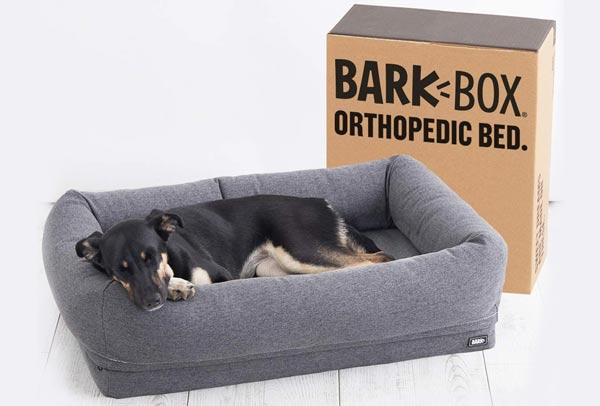 barkbox 2-in-1 donut cuddler dog bed review