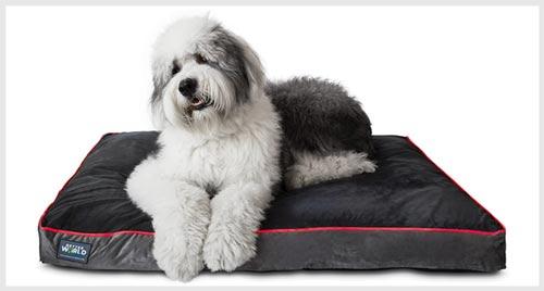 2. BETTER WORLD Orthopedic Dog Bed