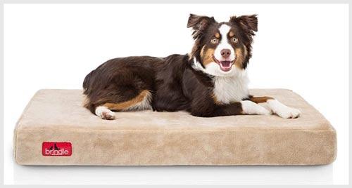 6. BRINDLE Waterproof Dog Bed