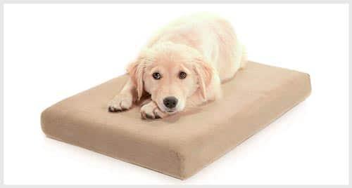 7. MILLIARD Orthopedic Dog Bed